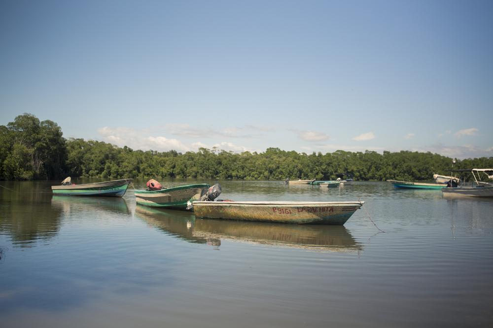 Pangas en Puerto San Pablo. La hora de salida del pescador depende de la altura de la marea. Para utilizar las pangas deben estar en marea alta.