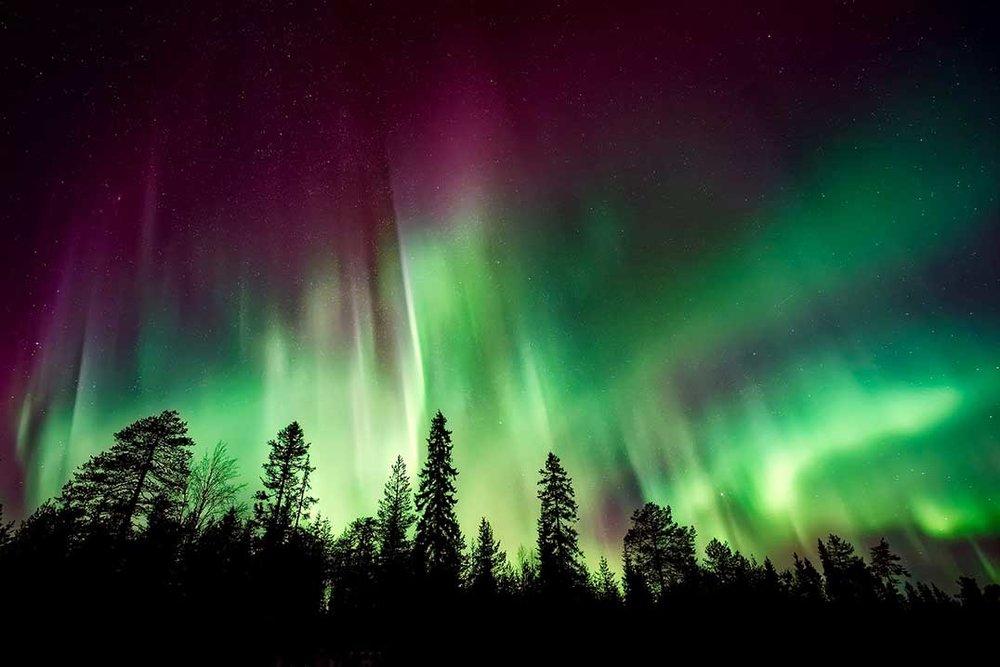 Aurora Borealis (Photo:  The Manitoulin Expositor )