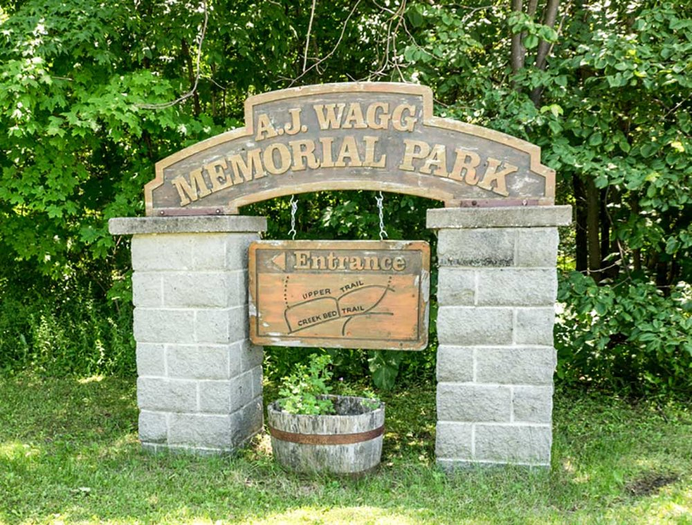 Wagg's Woods (Photo:  Manitoulin Expositor )