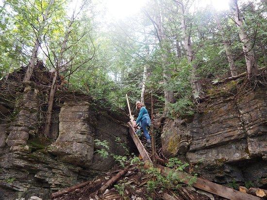Trail ladder (Photo:  TripAdvisor )