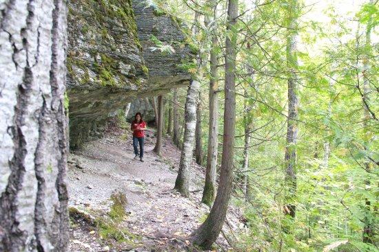 Adventure trail (Photo:  TripAdvisor )