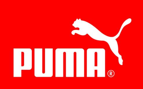 Puma Nikki Lu Lowe Voice Over Client