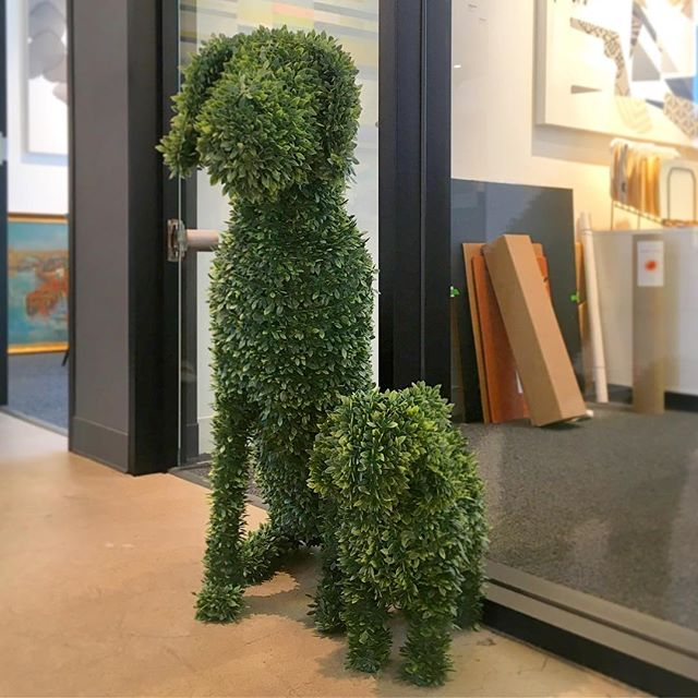 Just a friendly reminder that art can sometimes be serious, but it can also be fun and in the form of topiary puppies! Can you guess where these are going? #artforallsettings #BAconsulting