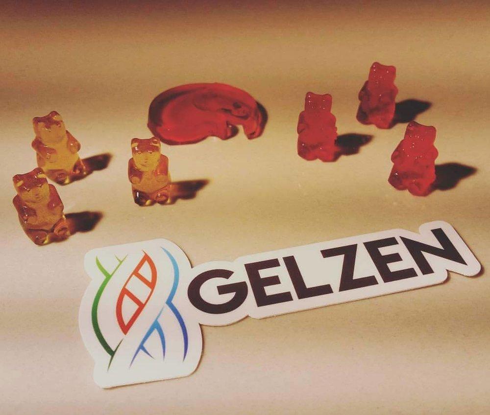 GelzenBears.jpg
