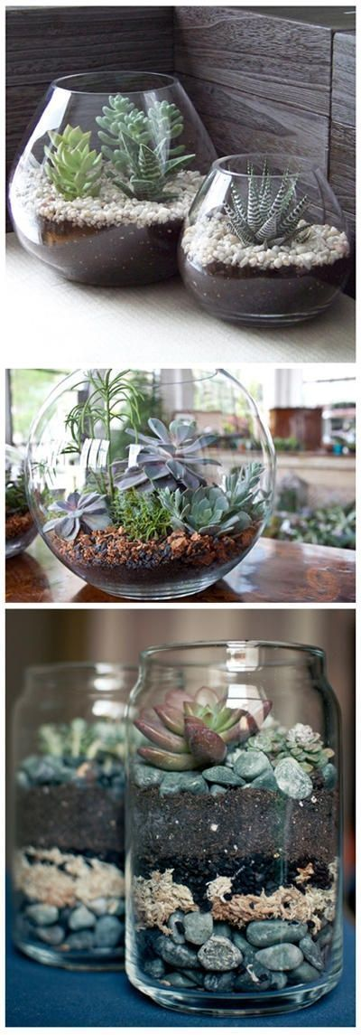 http://www.mycleanslateblog.com/2011/11/weekend-project-1-terrariums-for.html