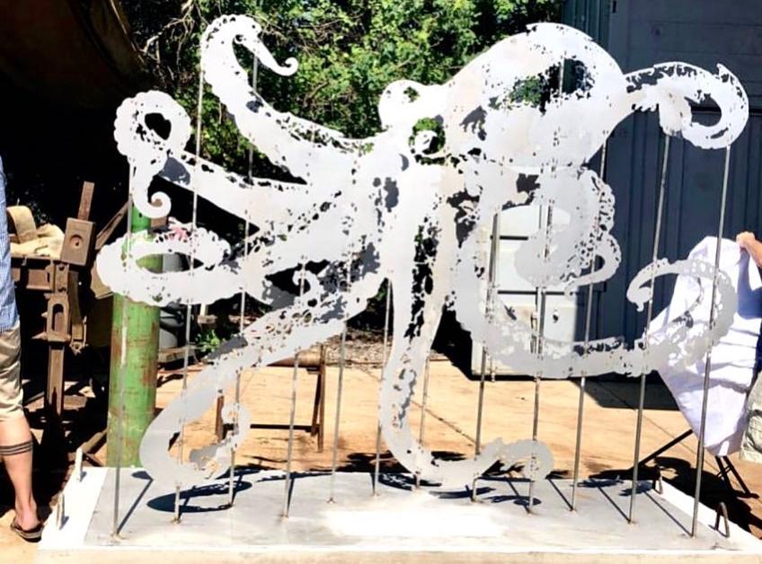 Anamorphous Octopus