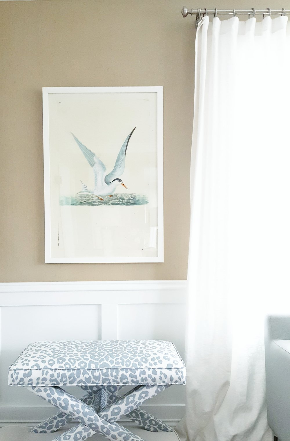 Aquatic Bird Print  - in Sitting Room by Ash Street Interiors