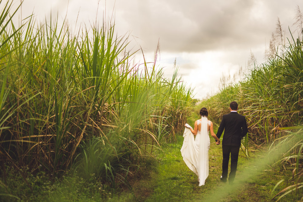 bride and groom walking in queensland field