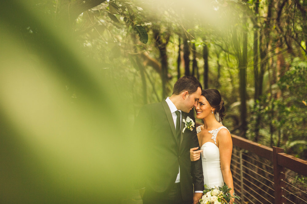 bride and groom in queensland mangrove