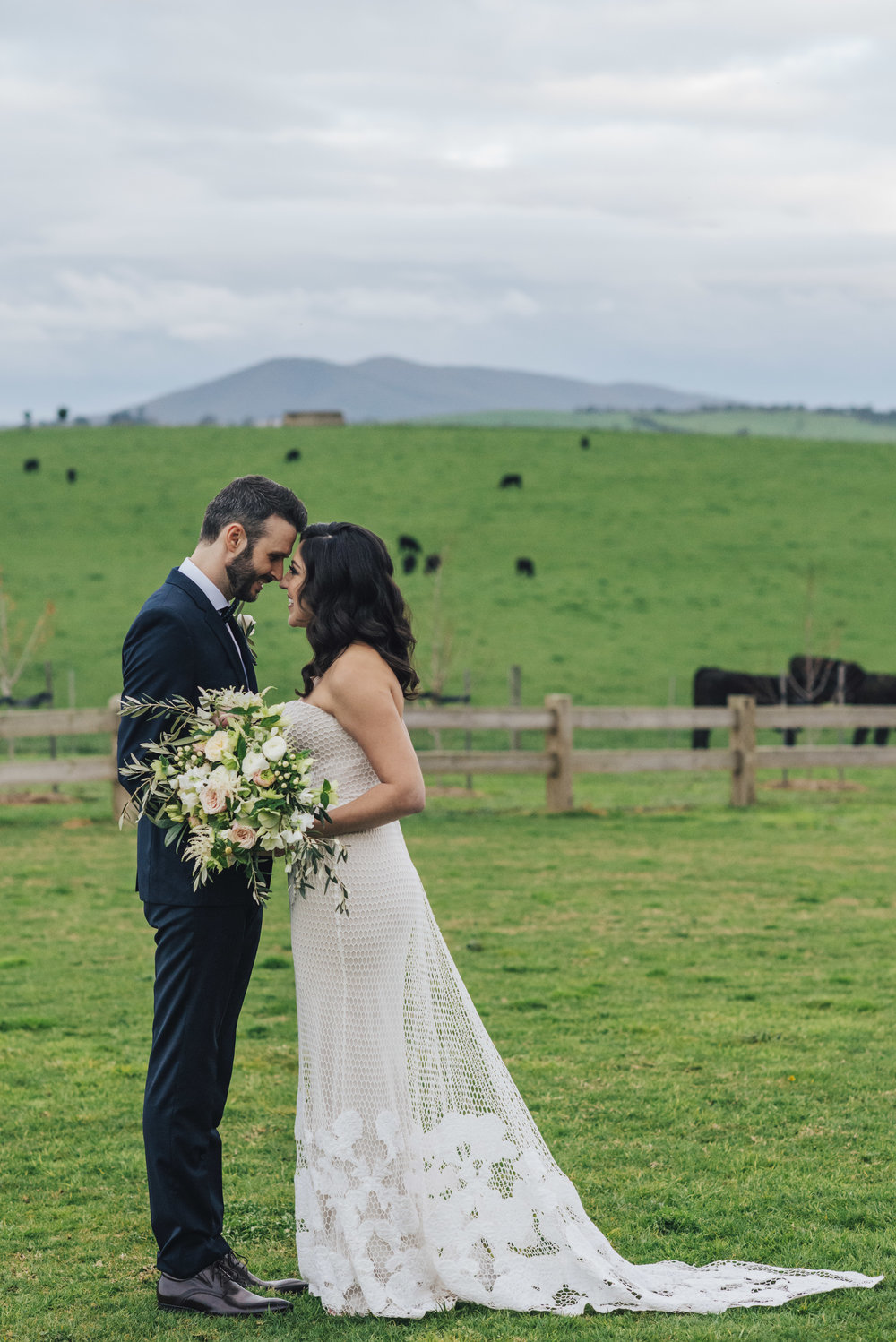 Cows in pasture wedding