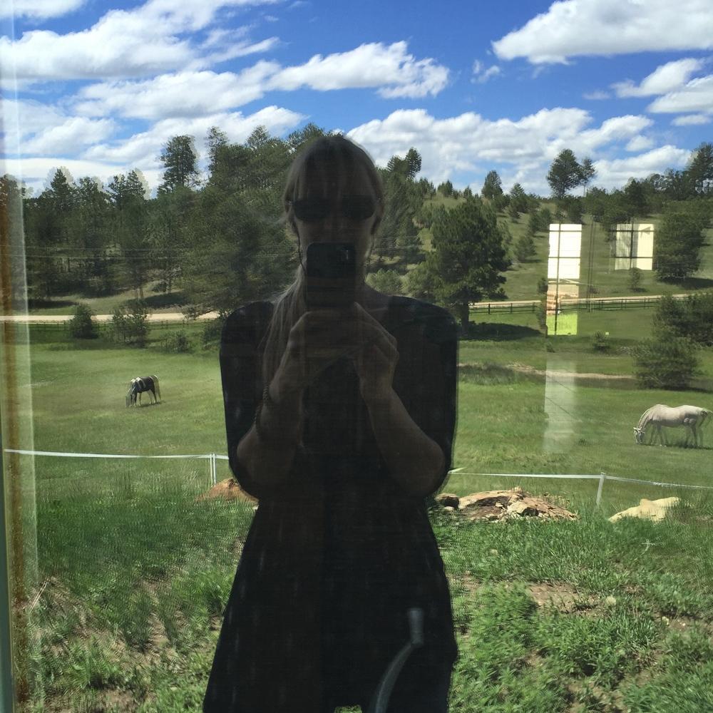A Backwards Glance, Black Forest, Colorado