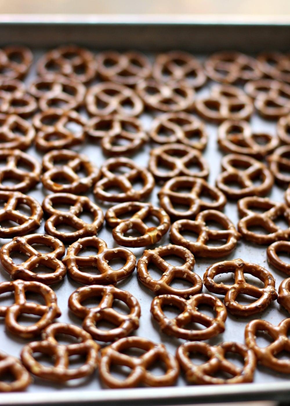 pretzel portrait.jpg