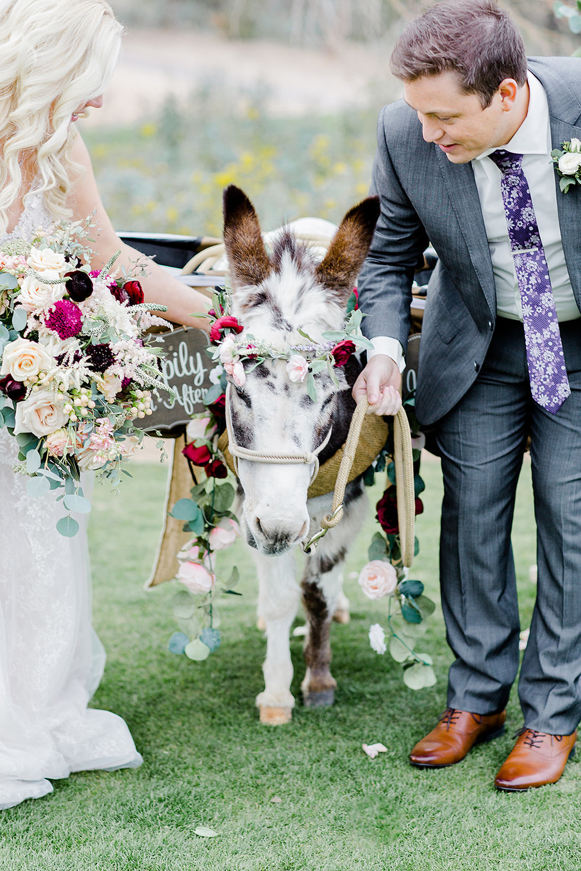 Jen_and_Ryan_Legacy_Wedding-Andrew_and_Ada_Photography_2019-851.jpg