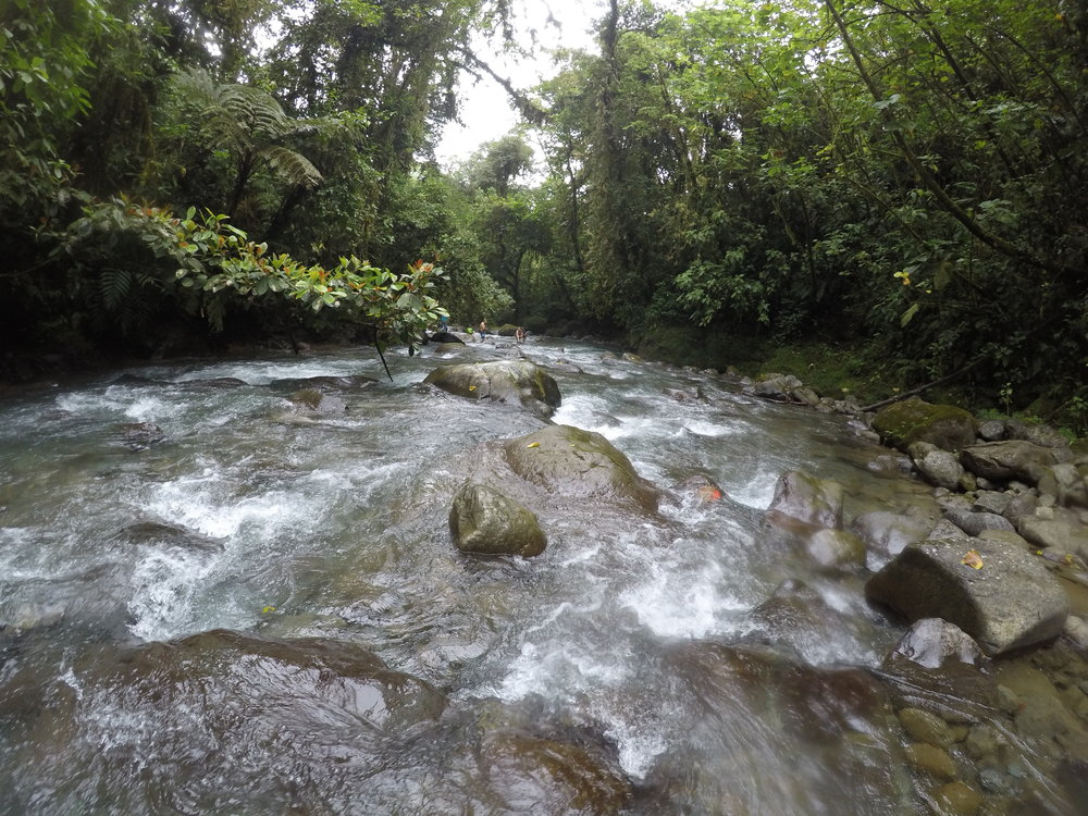 nature picture of river in costa rica