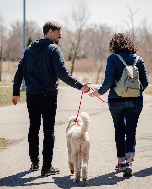 Any dog can be perfect on leash - Let Mark Elliott show you how to have the dog of your dreams!