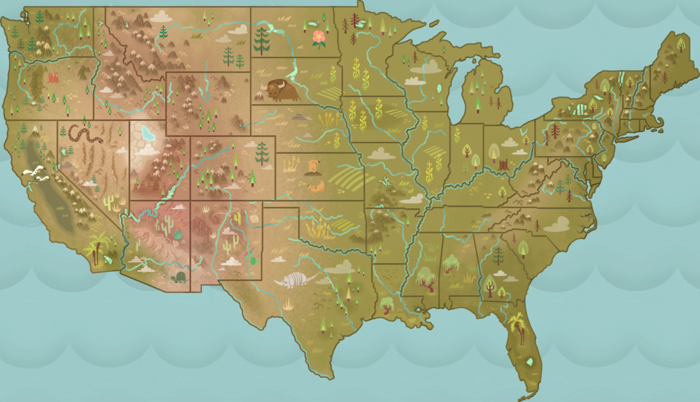 US Geography Game Map
