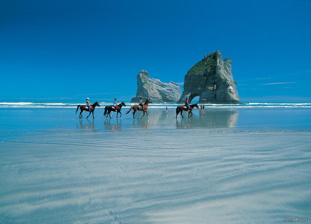 Wharariki Beach, Nelson, NZ, TonyBrunt.JPG