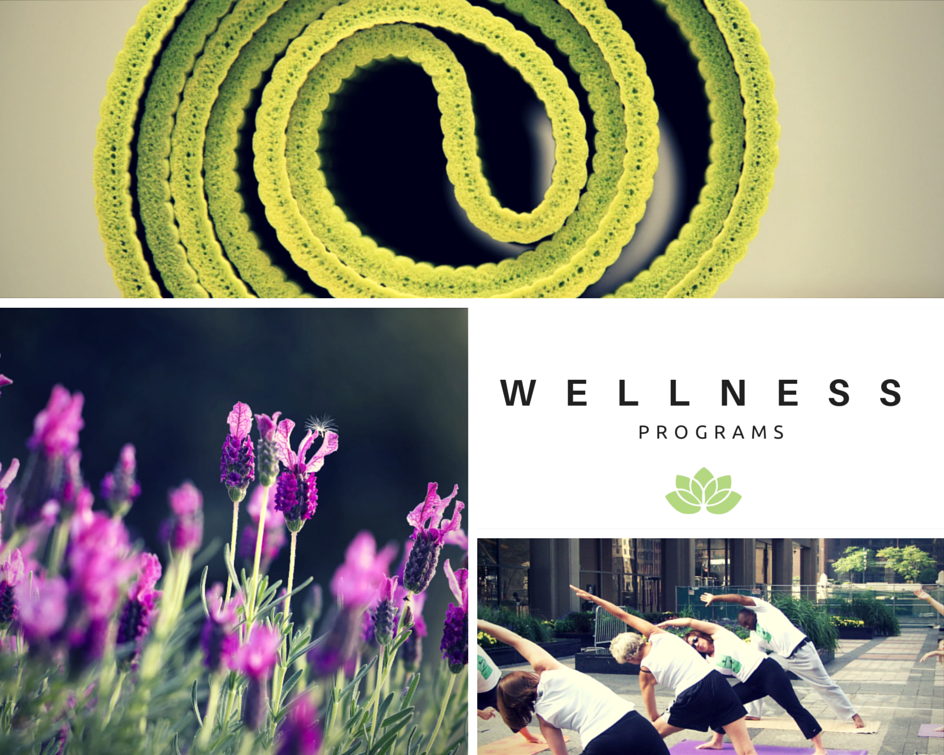 yoga retreats and workplace wellness programs