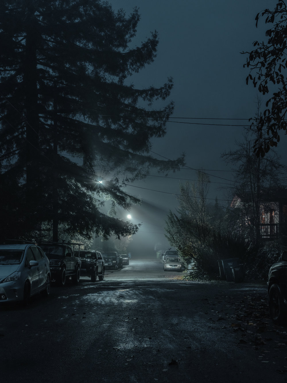 "Fog on Eastern Ave, Guerneville, CA, 2018.  24"" x 18"", Limited Edition of 5. Archival Pigment Print, Hahnemuhle Fine Art Paper.   Pricing & Purchasing Info"