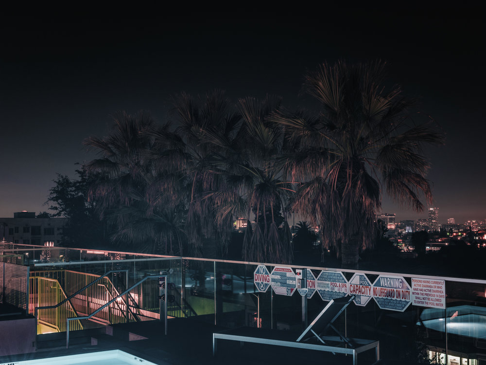 "Palms from Rooftop Pool, Los Angeles, 2018.  24"" x 32"", Limited Edition of 3. Archival Pigment Print, Hahnemuhle Fine Art Paper.   Pricing & Purchasing Info"