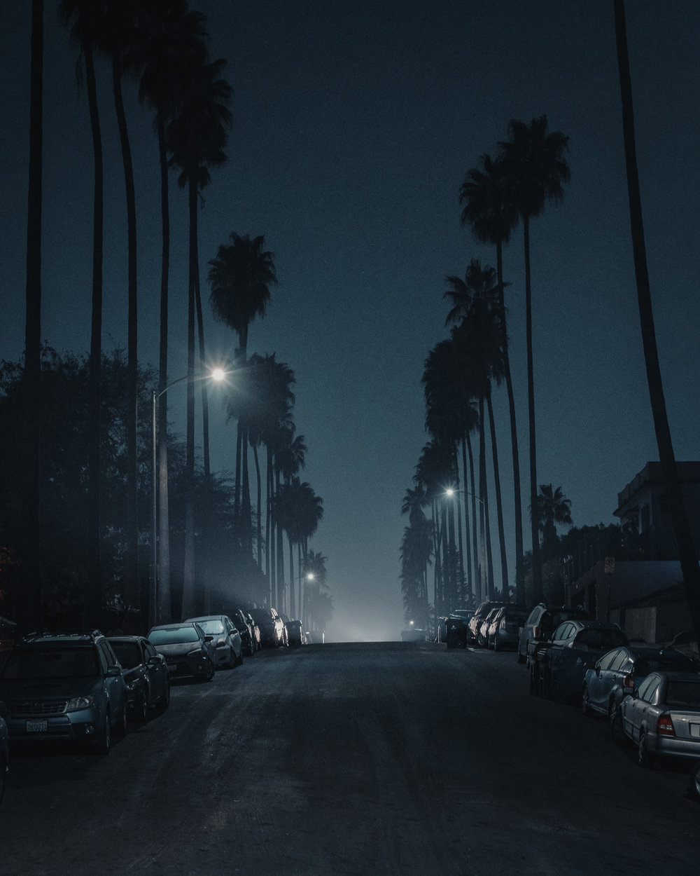 Nights-27.jpg