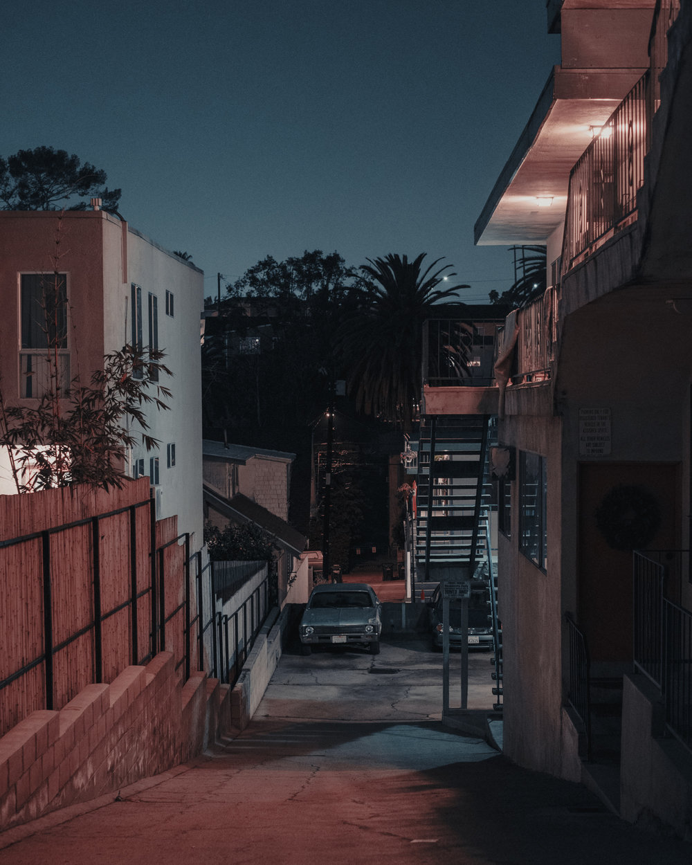 Nights-35.jpg