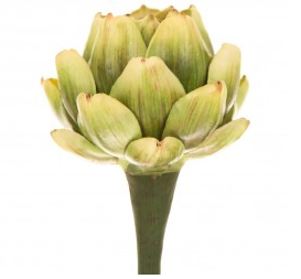 Artichoke Stem Fake Flower