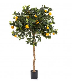 Fake Orange Tree