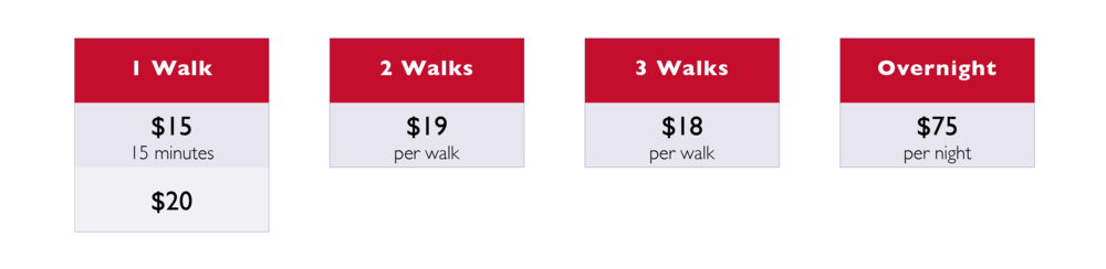 central_walking-01.png