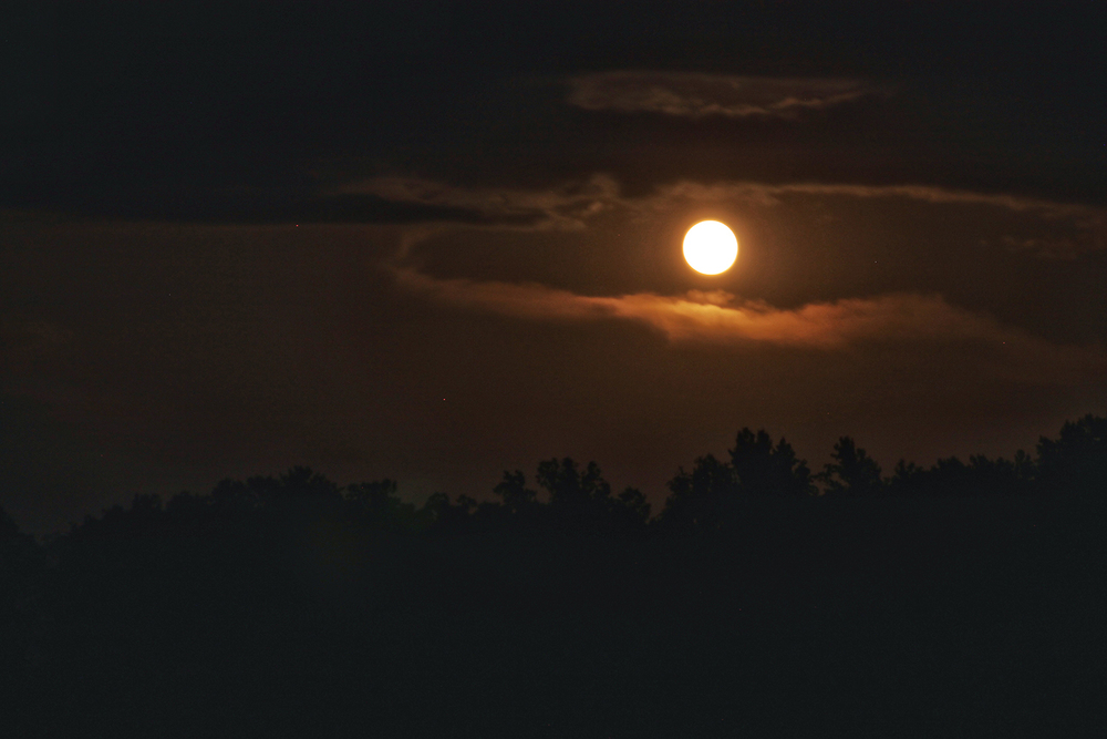 Check out the moon over our thirty-eight acres of Indiana forest!
