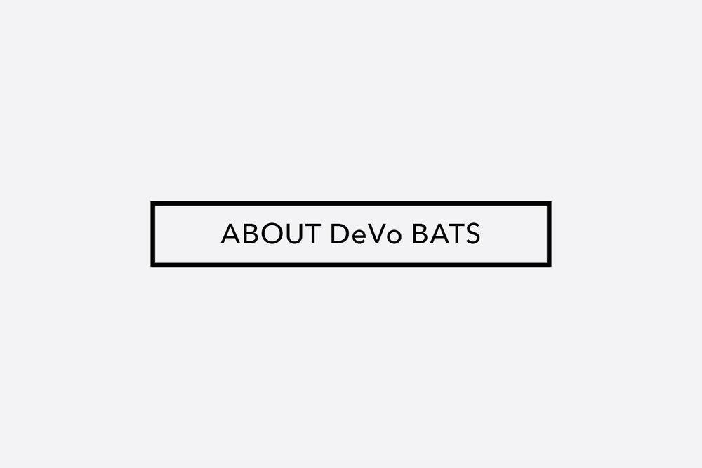 About-DeVo-Image.jpg