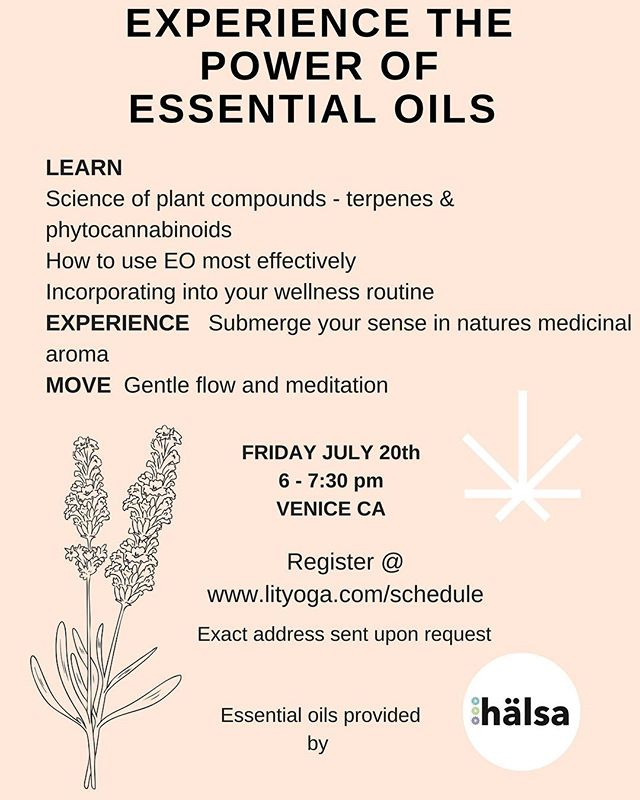 Come enjoy an evening of everything essential oils. Learn why these oils are so powerful & how to incorporate into your wellness routine. Enjoy a mild meditation & yoga flow enhanced with our very own essential oil + cannabinoid blends. @lityogastudio @balncebliss