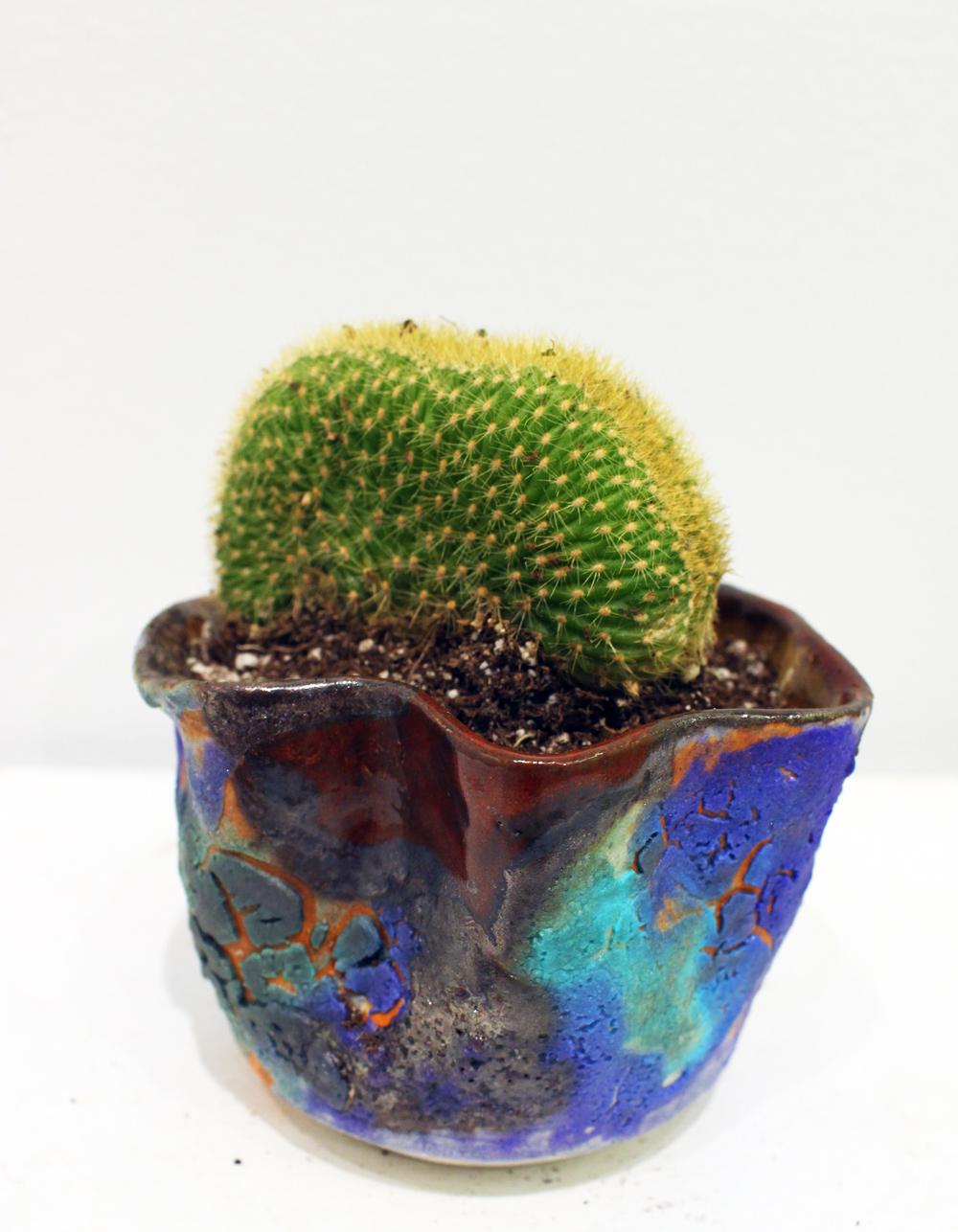 planter_0004.JPG