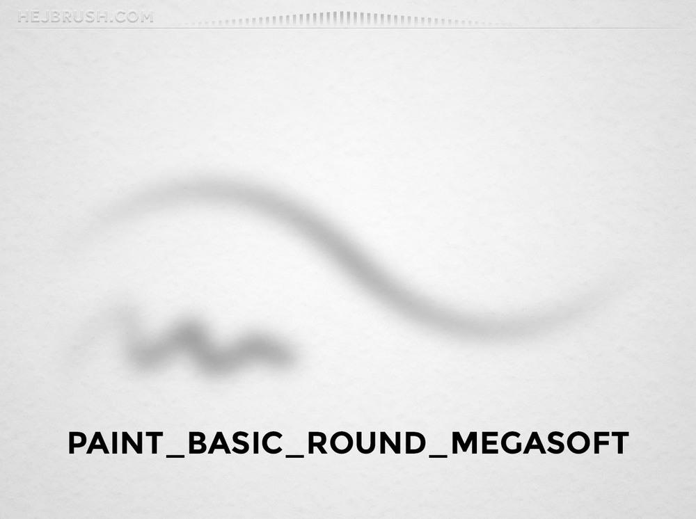 21_PAINT_BASIC_ROUND_MEGASOFT.jpg