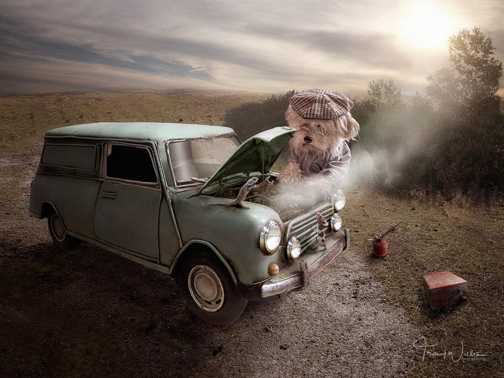Tracy Willis Fine Art Photography Bournemouth-6.jpg