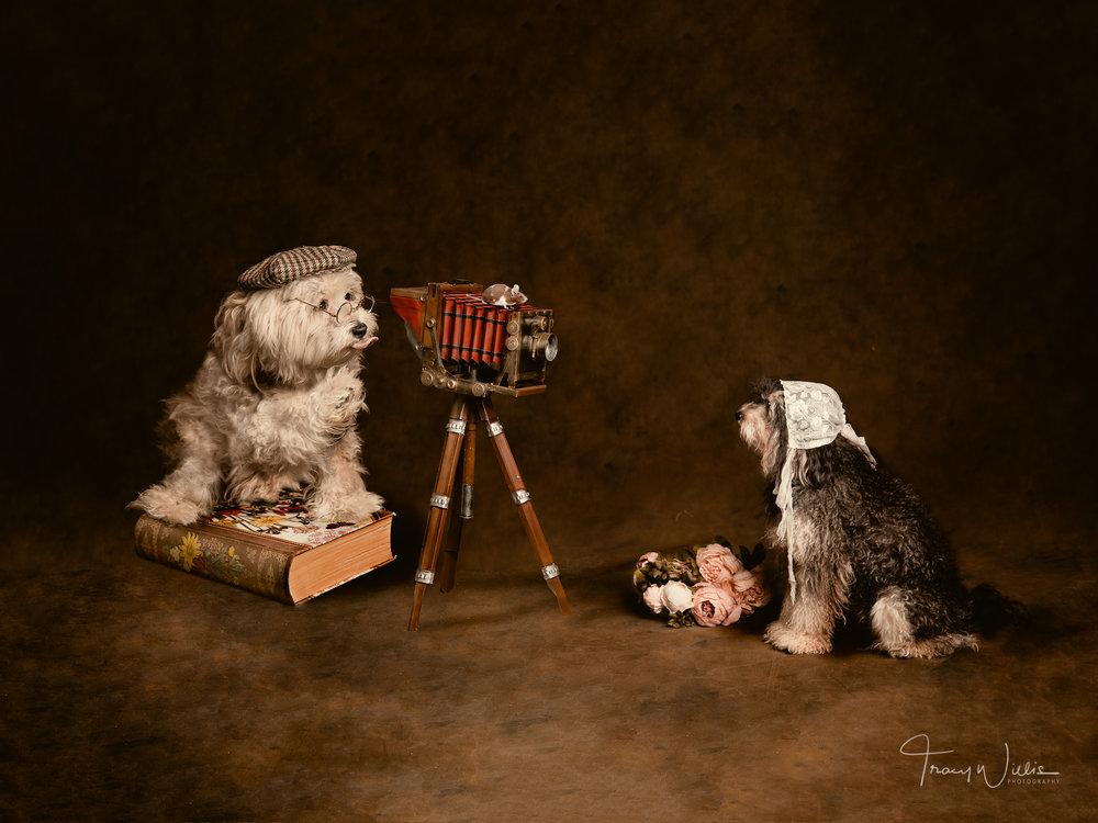 Tracy Willis Fine Art Photography Bournemouth-15.jpg