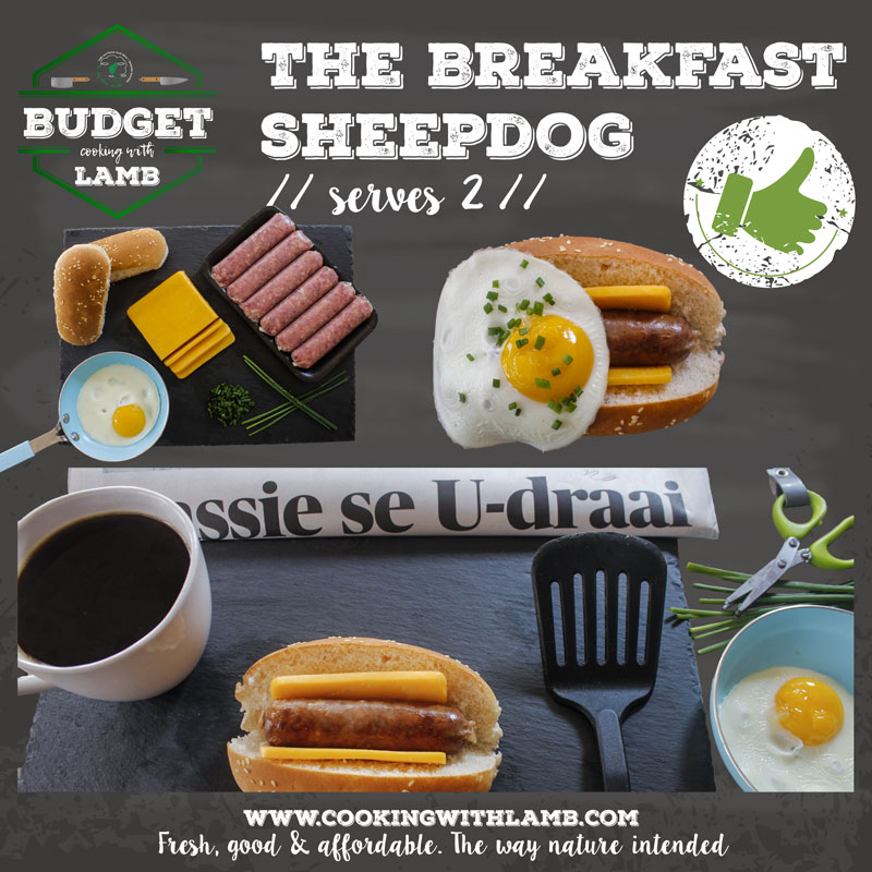 Breakfast-Dog-.jpg