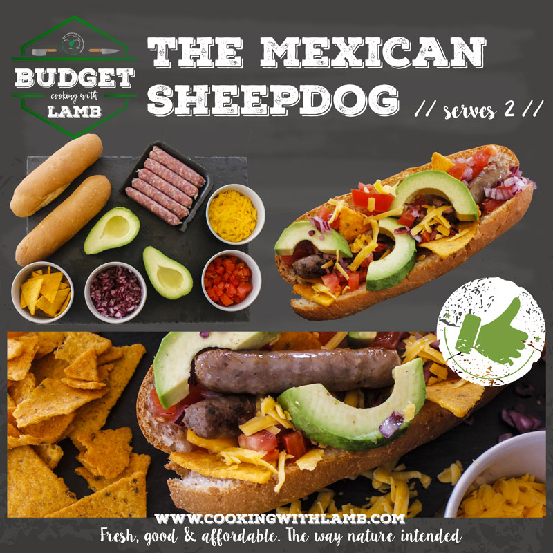 Mexican-Sheepdog-2.jpg