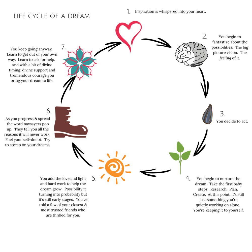 Life Cycle of a Dream