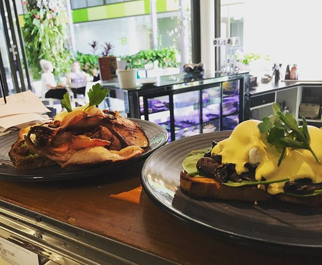First breakfasts of the morning! What a day to be alive 😀🤗😋😍 #breakfast #caboolture #caboolturecafe #delicious #cafe #cafes #brunch #eggsbenedict #avocado