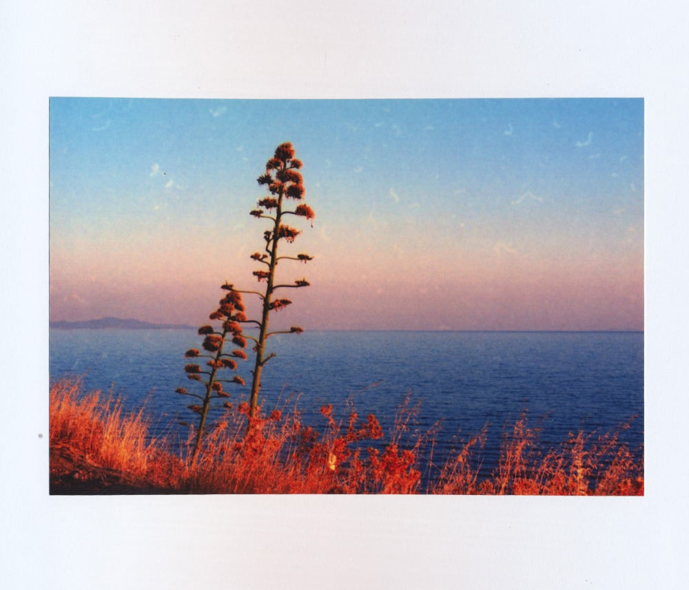summer_diary_more034.jpg