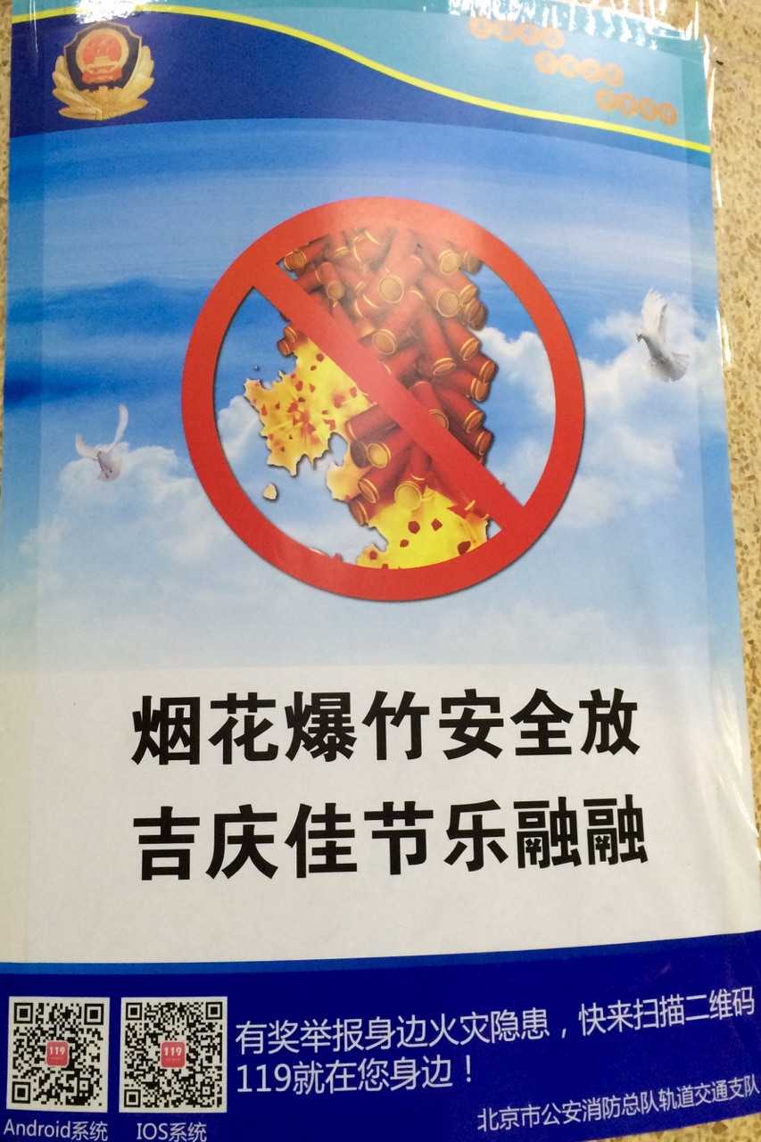 "Chinese Spring Festival is on its way as are the public service announcements, which I can only assume say ""Just so you know, birds don't like firecrackers"""