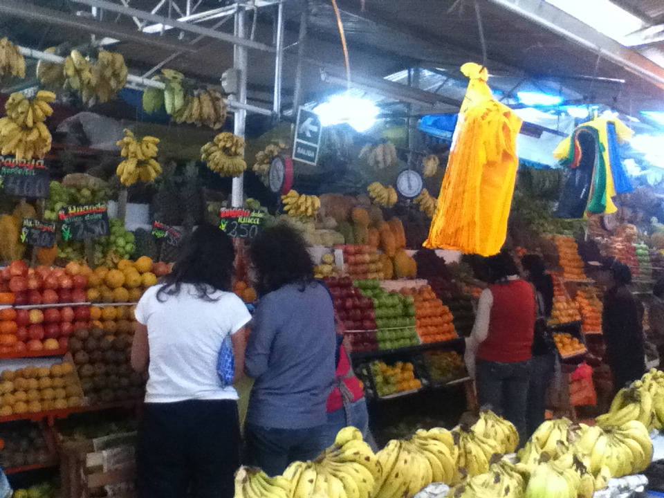 "One of the many fruit stands here in Peru. Among the standard apples and bananas, there are lots other fruits that I've never even seen before. To say the least, it's a bit of a hit or miss buying unknown fruits in terms of ""that was delicious"" or ""why did I buy that?"""