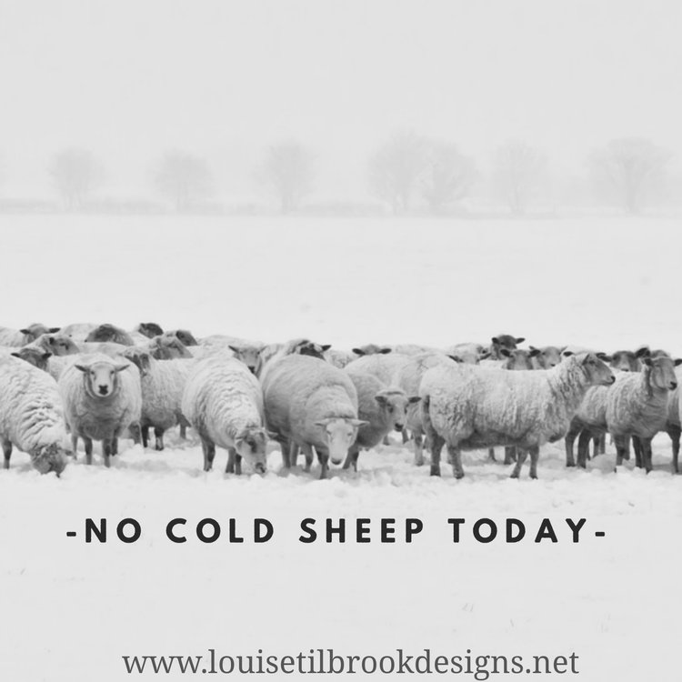 Everyday Knitter Blog — Louise Tilbrook Designs