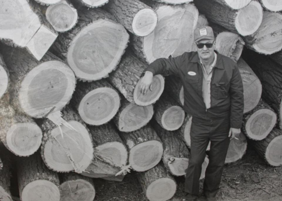 Donald Barcel standing next to a pile of Cottonwood logs his crew cut down.