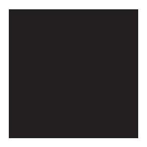 SKURNIK_logo_black_CMYK.png