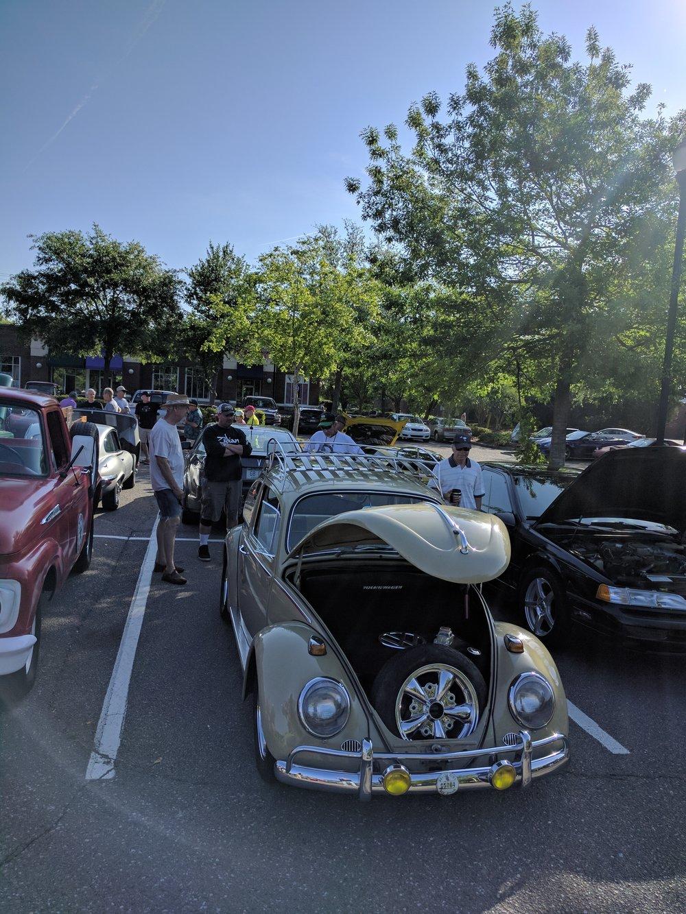 Bug1-20170415.jpg