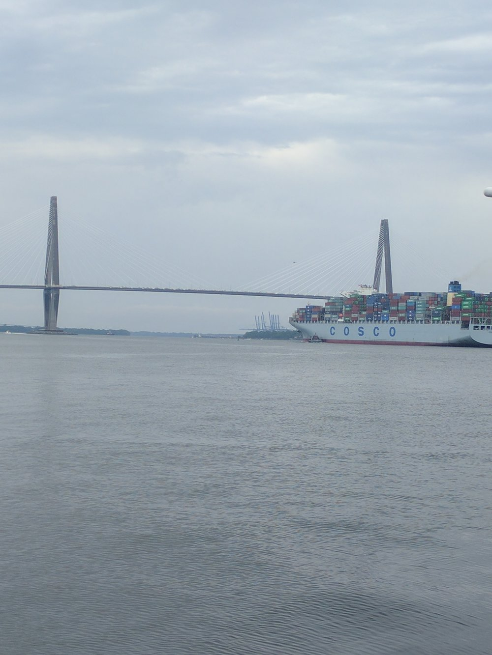 DevelopmentApproachingRavenelBridge7.jpg
