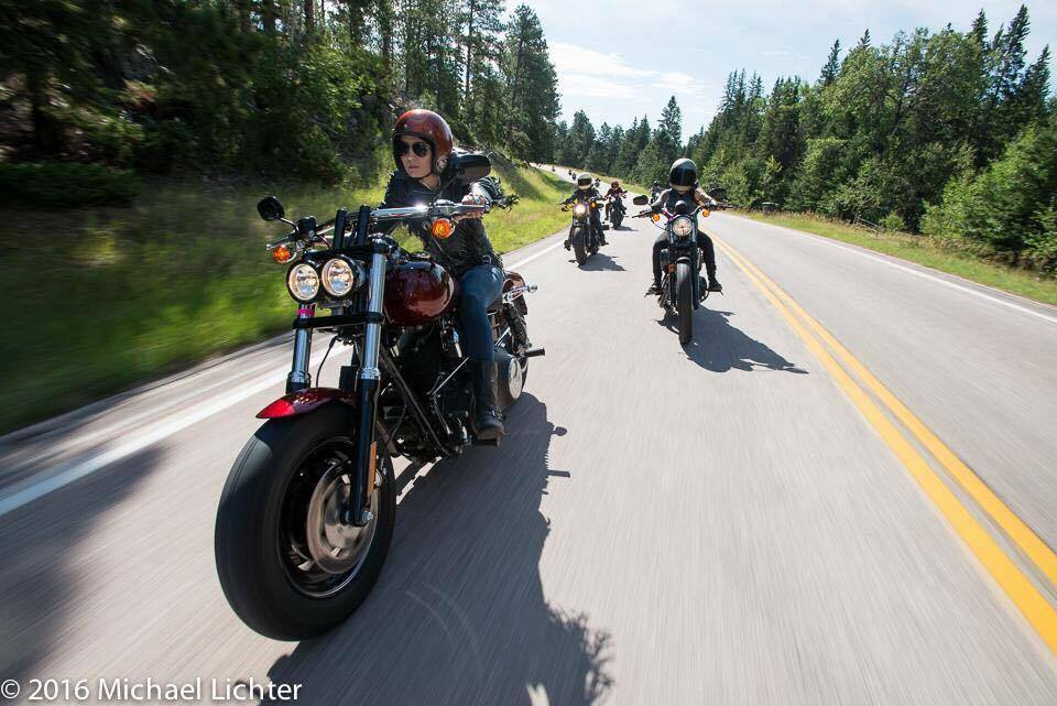 Ripping through the Black Hills on the HD Fatbob.