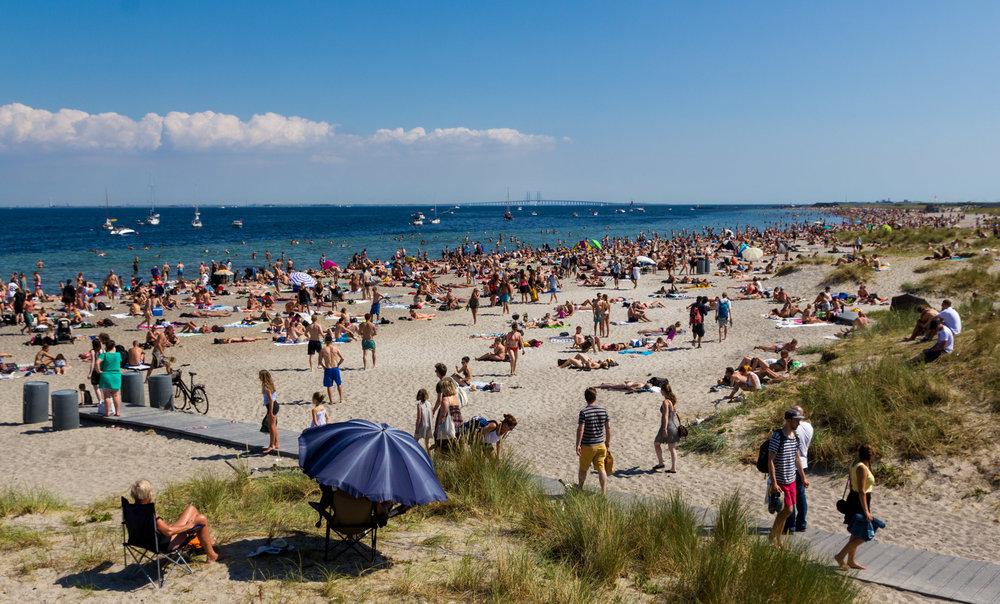 Amager_Strandpark_2014.jpg